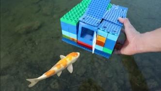 国外小伙用乐高制作的陷阱,抓到漂亮的小金鱼,一起来见识下!