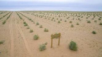 """马云为什么要在沙漠里?#36136;鰨?#30475;看如今的""""沙漠"""",你就明白了!"""