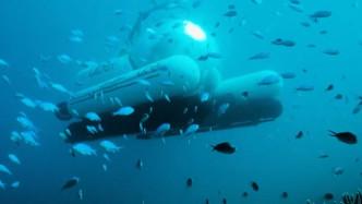 澳大利亚大堡礁推出共享潜艇:2人2000美金 深入海底30米