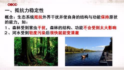 高中生物必修三《稳态与环境》5.5.生态系统的稳定性