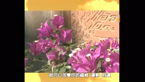 元辰宫权威钟丝雨老师 针对慈济大学生问题 回复关于PTSD