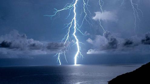 打雷时一道闪电劈进大海,海里的鱼会怎么样?看完大开眼界