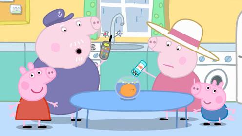 手繪兒童簡筆畫:小豬佩奇,喬治和豬爺爺一起在看金魚吃東西