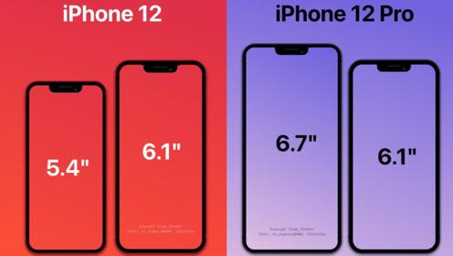 9月发布10月开卖,iPhone 12发布时间曝光,价格上涨