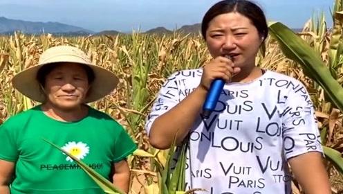 农村媳妇地头演唱《农民难,种地难,农民的辛