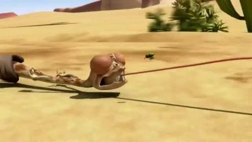 小蜥蜴奥斯卡:这几个小动物,真的挺高能,也
