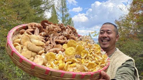 独居长白山,豪横的野生蘑菇宴,折腾了两天两夜,原始深山的味道