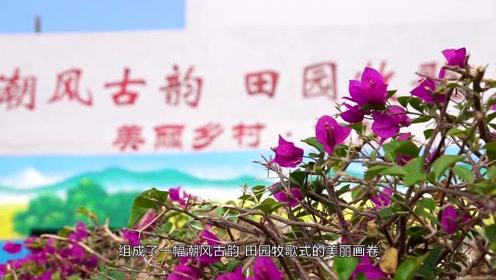 维斯带你趣旅行20201209生态濠江——《维斯带你游濠江》(三)
