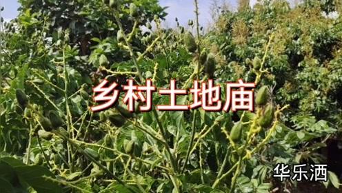 民间故事巜乡村土地庙》