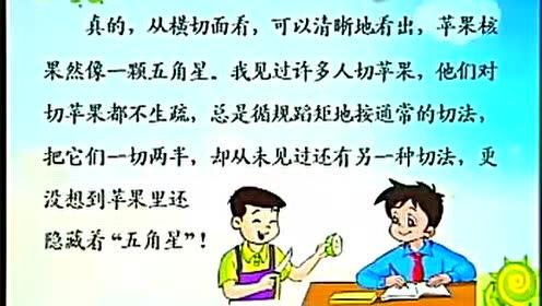 苏教版四年级语文下册5 苹果里的五角星