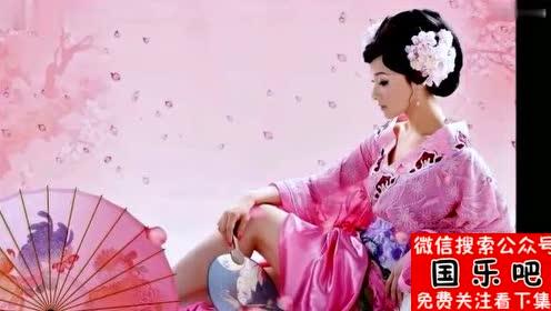中国古典音乐《梅花三弄》中央民族乐团弹奏