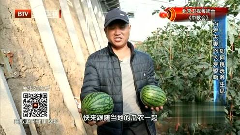 生活中你会挑好的西瓜吗?专家现场教你分享秘