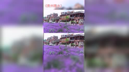 热门小视频:贵州惠水!