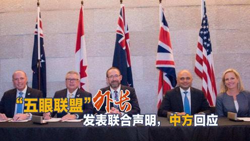 """""""五眼联盟""""外长干涉中国内政,赵立坚提醒个"""