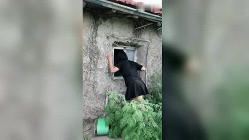这个视频火了,小姐姐趴老屋窗上往里看,想不到里面是这种场景