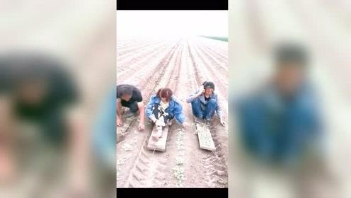 农民的智慧,现在可以轻松种地