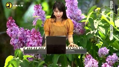 优美的音乐 鸟语花香 仙境