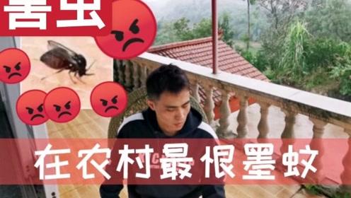 四川小伙,被墨蚊折磨发视频求助,希望有人帮忙改善农村生活环境