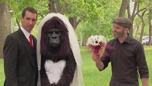 """老外街头恶搞,小伙同""""猩猩""""拍婚纱照,路人"""