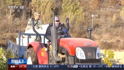 龙泉村探索现代化农业,种植精品大米,村民过上新生活