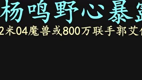 CBA休赛期,杨鸣野心暴露,2米04魔兽或800万联手郭艾伦