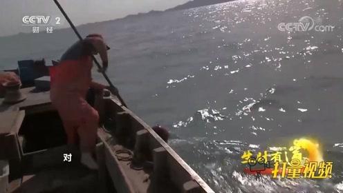 带你走进真实的渔民生活,感受收获的快感,太过瘾了