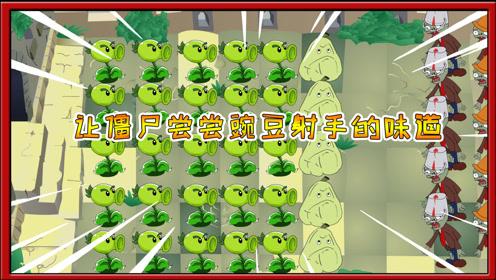 植物大战僵尸搞笑动画:满地图的豌豆射手,僵