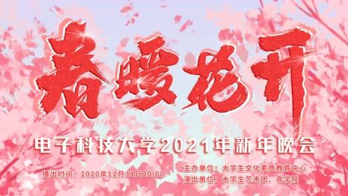 视频DVD版-春暖花开电子科技大学2021新年晚会