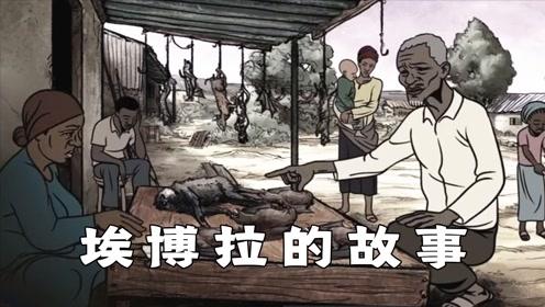 爷爷嘴馋买蝙蝠吃,导致全村感染埃博拉病毒,科普短片《埃博拉的故事》#电影种草指南短视频大赛#