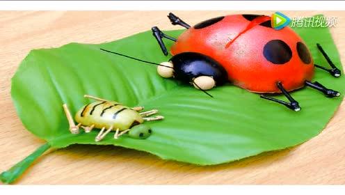 人教版一年级美术下册第8课 瓢虫的花衣裳