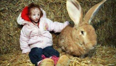 现实版拇指姑娘:6岁时比兔子还小