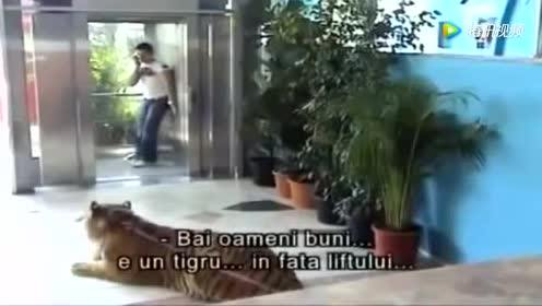 搞笑爆笑视频:国外恶搞整人!刚想出电梯!发