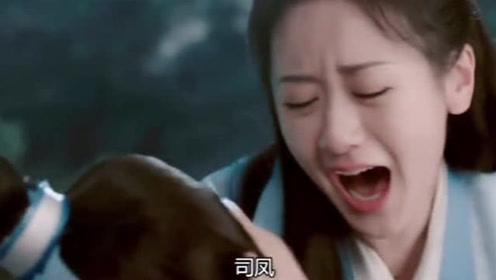 为救心爱之人甚至可以不顾及自己的生命,司凤拼命护妻的样子真迷人