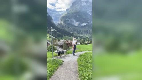 阿尔卑斯山里遛狗的瑞士人,他这个才叫生活,而我最多只能叫生存