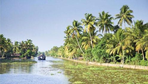 近20万人无家可归!印度旅游胜地遭遇百年不遇大雨,渔民加入救援