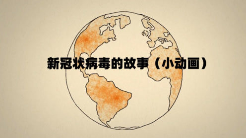 新冠状病毒的故事(动画)