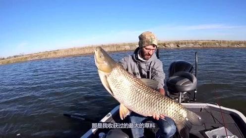 美国鲤鱼泛滥,路亚竟能钓到巨型草鱼,只可惜他们不吃!