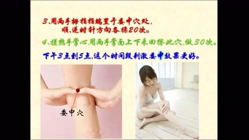 膀胱经要穴-委中穴