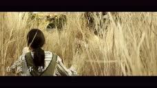林忆莲倾情演唱《记忆大师》主题曲《我不能忘记你》