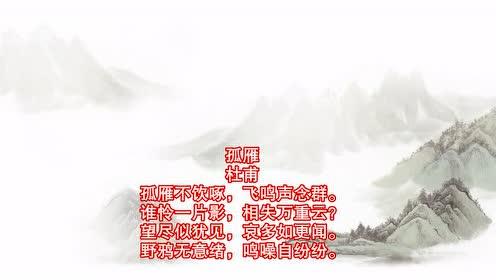 朗诵:唐诗300首 杜甫《孤雁》
