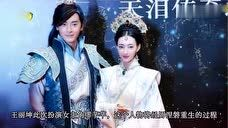 《天泪传奇之凤凰无双》预告片花 王丽坤郑元畅丁子峻白冰