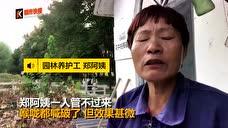 痛心!杭州新晋网红打卡地的粉黛被蹂躏成这样