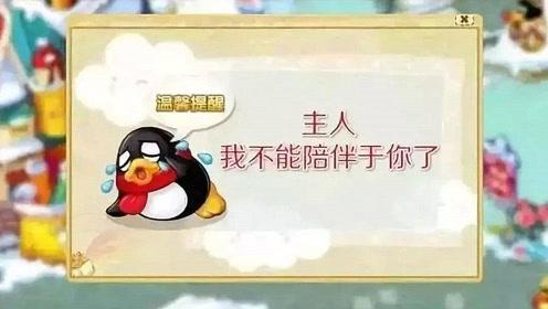 QQ宠物被永久关闭后,这四种QQ号将被回收!你的QQ号还在吗?