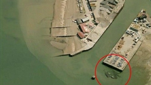 英國疑現15米巨型螃蟹,被兩男孩發現,目前已知最大螃蟹才4米