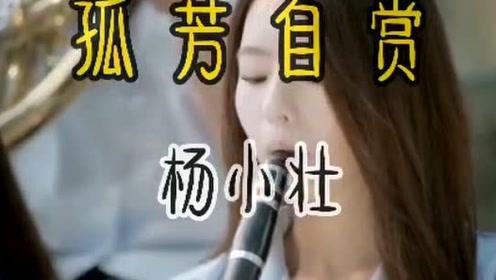 2020年最火歌曲杨小壮《孤芳自赏》DVD版