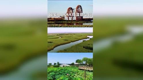 吃最特色的美食,游最清新的湿地公园!