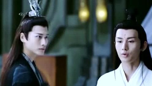 司凤为璇玑做了他能做的一切,只愿璇玑无恙