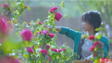 一口甜到心坎儿里——玫瑰鲜花饼