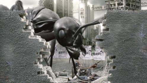 三小伙穿越到世界末日,虫子竟靠吃人维持生命!一部科幻喜剧电影