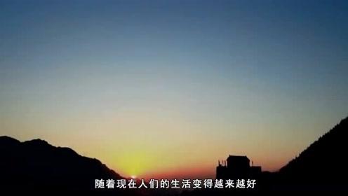 出境旅游看到满大街的纯中文警告,你怎么看?